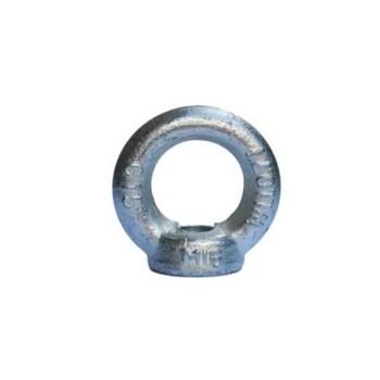 IS Range DIN582 Metric Eye Nuts